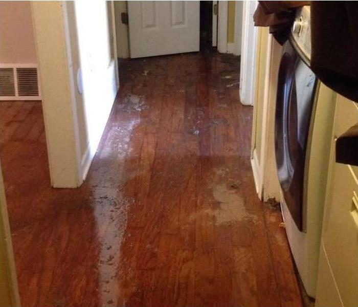 Water Damage How Water Damage Can Affect Your Home
